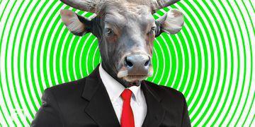 """Eher Bullshit als Bullenmarkt"": Bitcoin-Community spottet über WSJ-Aussagen"