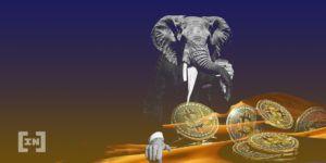 Bitcoin in Afrika - ein kleiner Gigant?