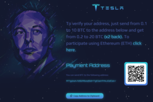 Anleitung für den Elon Musk Scam