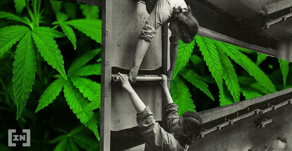 BeInCrypto Cannabis Art